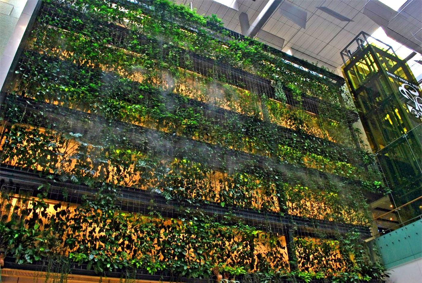 Singapore Changi Airport Terminal 3 Greenwall  Greenroofscom
