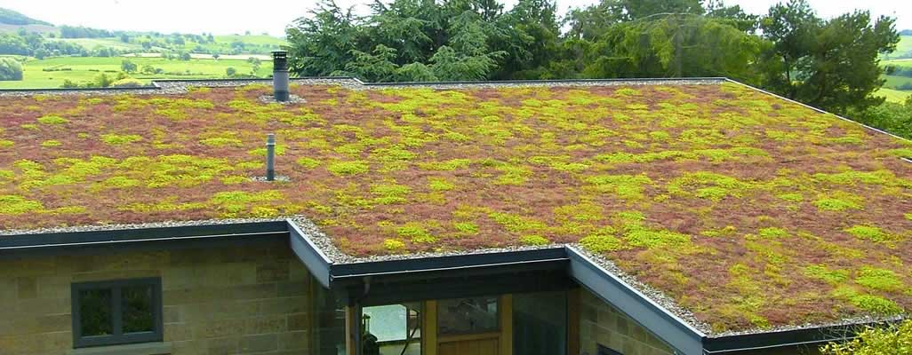 Green Roof Installers Skipton North Yorkshire