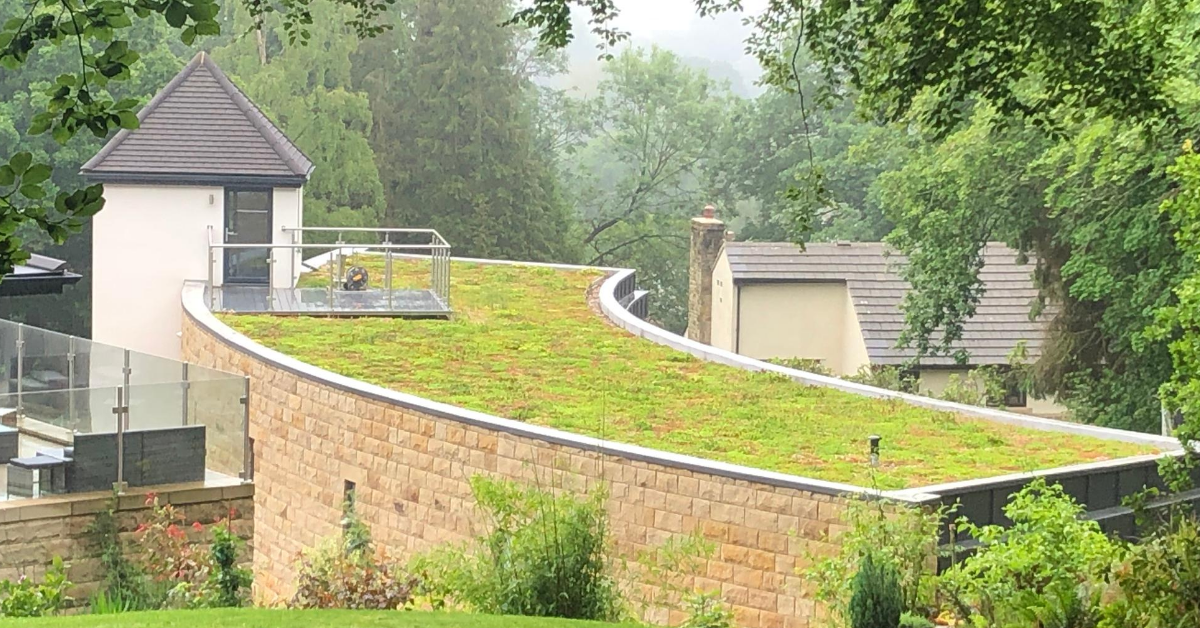 Green Roofs Of All Shapes And Sizes