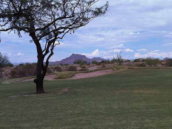 Longbow Golf Club Mesa Arizona