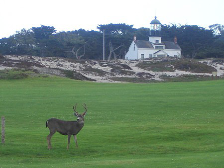Pacific Grove Golf Links Pacific Grove California.