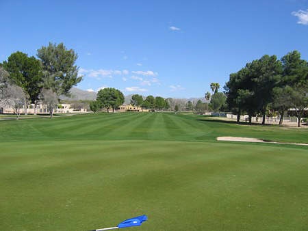 Forty Niner Country Club Tucson Arizona. Hole 11 Green-sde