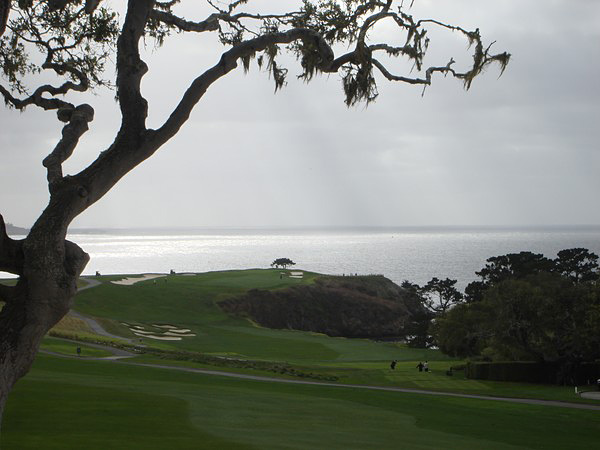 Pebble Beach Golf Links Pebble Beach California. Lone Cypress from Hole 14
