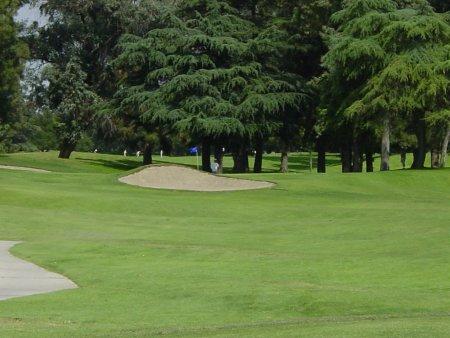 Santa Anita Golf Course Arcadia California Hole 15 Par 3
