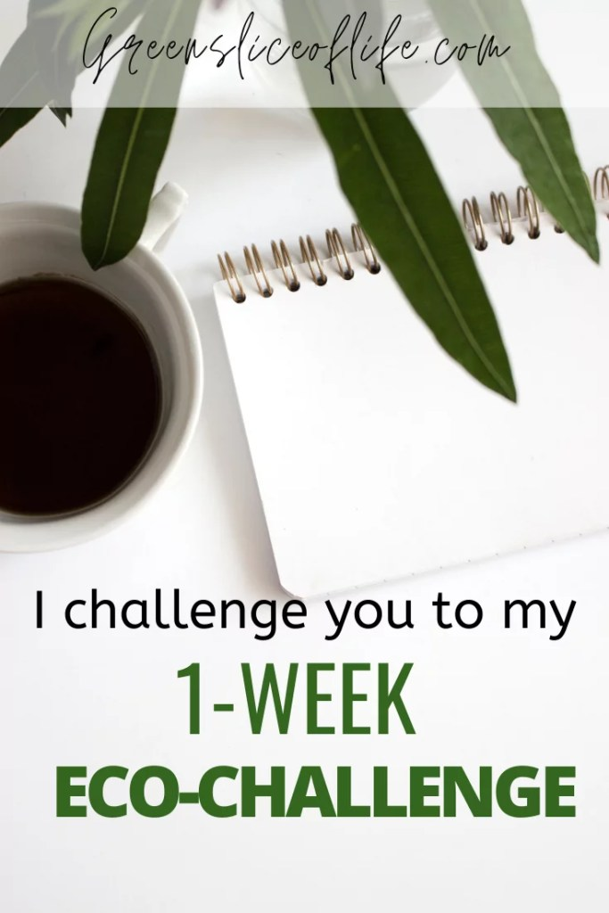 1 Week Eco-Challenge