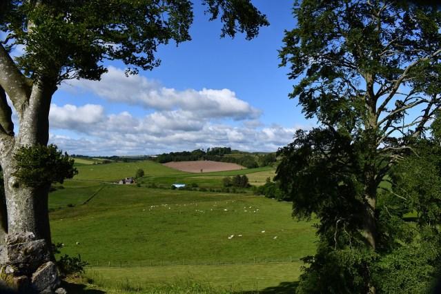 Vor der schottischen Aufklärung lebten der Großteil der schottischen Bevölkerung auf dem Land - Eine Agrarlandschaft in Schottland (Image by Signboy58 from Pixabay.com).