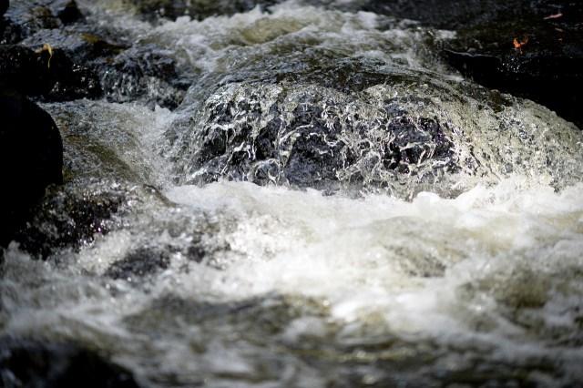 Schauberger erkannte, dass Gewässerströmungen große Wasserenergie freisetzen können  (Bild von Andrew Wilson auf Pixabay