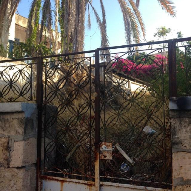Die Vorgärten von Aphaia und Nektarios? Das nicht, aber immerhin Privatgärten in der Hauptstadt der griechischen Insel Ägina.