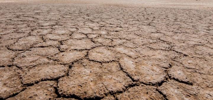 trump's environmental policy