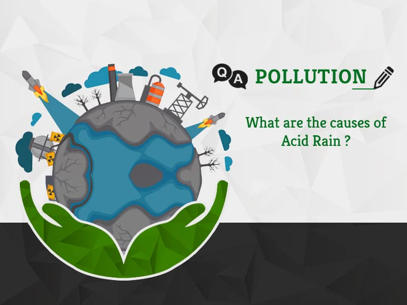 What are the causes of Acid Rain by GreenSutra