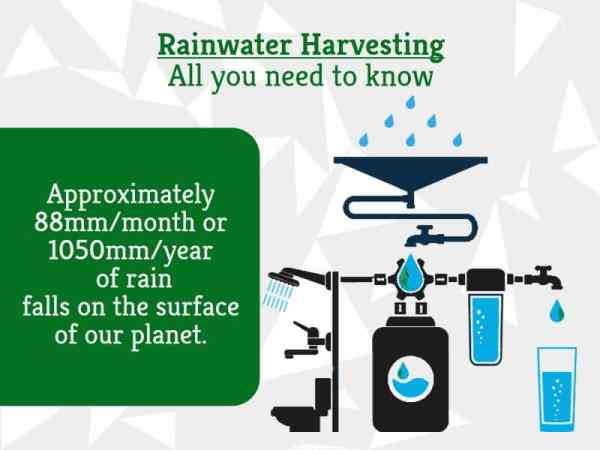 Rainwater Harvesting - All you need to know | GreenSutra | India