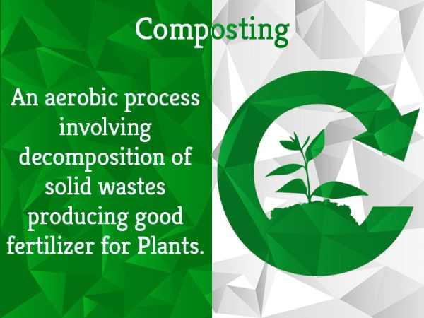Composting Basics