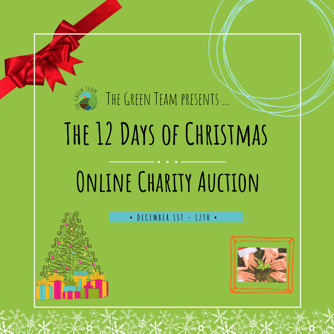 christmas auction graphic