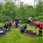 group of high school kids planting seeds