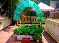 Smart Gardens: Complete Kits for Organic Terrace Kitchen ...