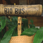 Bio bus at the Green School Bali