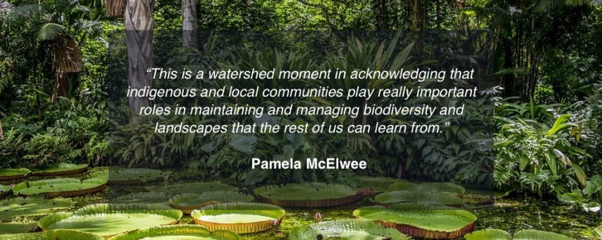 """This is a watershed moment in acknowledging that indigenous and local communities play really important roles in maintaining and managing biodiversity and landscapes that the rest of us can learn from."" Pamela McElwee"