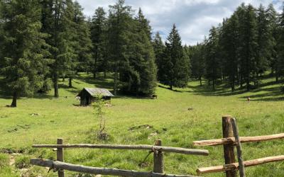 Trekking Laghestel – Capitel de le Caore – Poggio dei pini – Grill