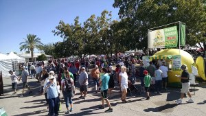 8th Annual Sahuarita Pecan Festival Draws Nearly 25,000