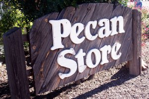 Green Valley Pecan Company Breaks Ground on Refrigerated Warehouse