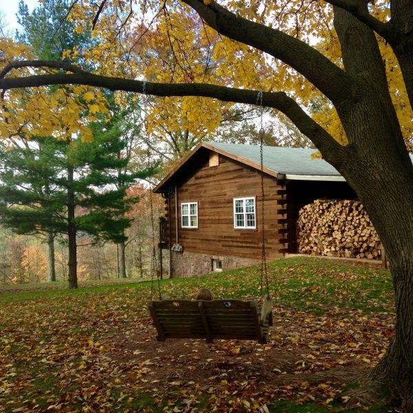 Cedar Lodge - Swing