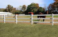 3-Rail Horse Fence   Rail Fence