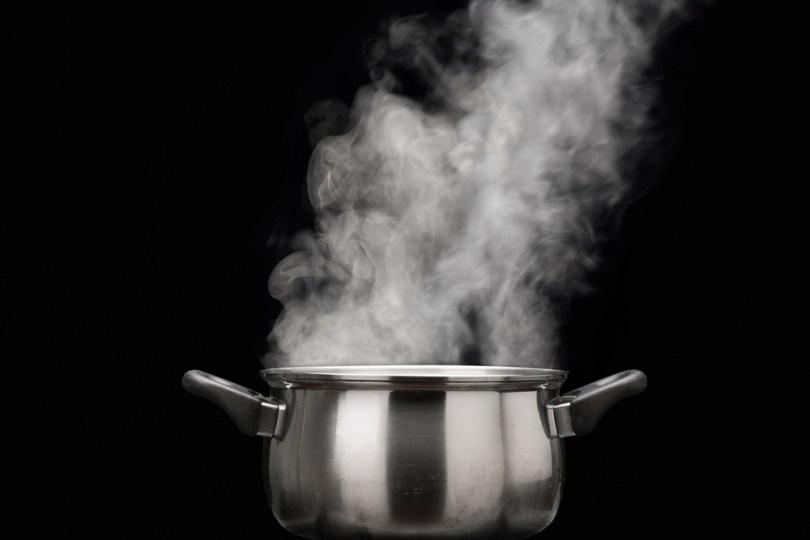 Cuisson douce à la vapeur
