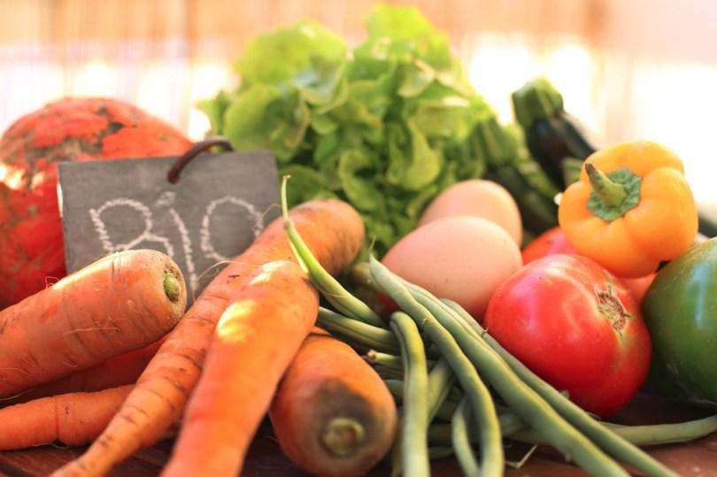 légumes pour constitution naturopathie