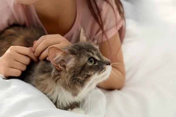 petite fille câline son chat