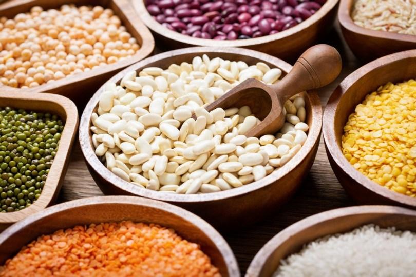 Légumineuses et céréales, sources de protéines végétales