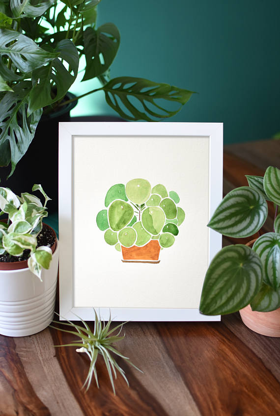 Pilea Watercolor painting_from Home by Faith on Etsy