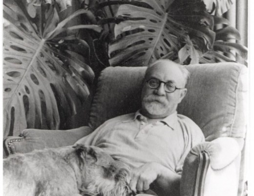 Henri Matisse and monstera plant