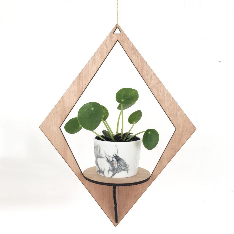 EkoPlantHanger - Dutch Design