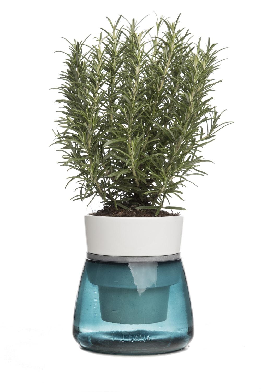 Livana Self-Irrigating Planter by Sbam Design