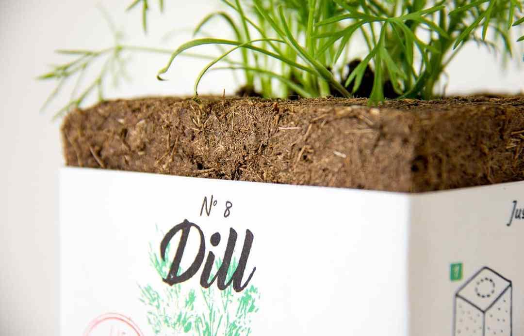 Lifi Compostable Herb Packaging designed by Edmundas Jankauskas