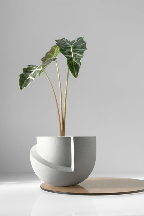 Vayu Planter made in the USA by Light and Ladder
