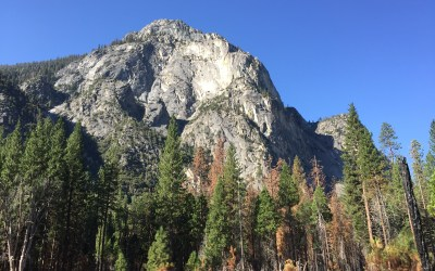 Sequoia Trip and Four Day Itinerary