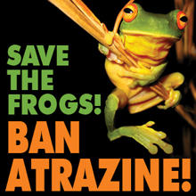 http://www.savethefrogs.com/threats/pesticides/atrazine/images/Atrazine-Ban-220.jpg