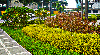 commercial industrial landscaping