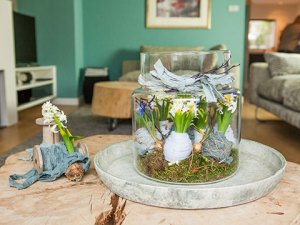 Ingepakte hyacintenbollen