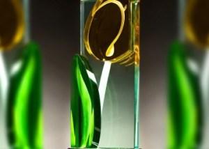 Uitreiking Glazen Tulp Awards 2021