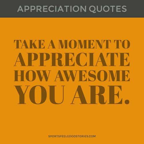 i appreciate you quotes