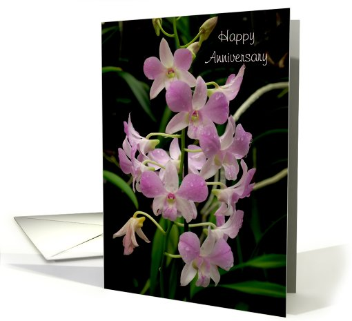 Happy Anniversary card pink orchids with waterdrops card