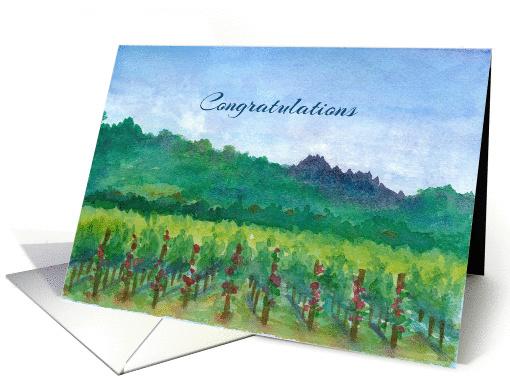 congratulations vineyard roses