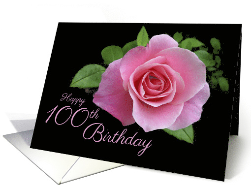 Happy 100th Birthday Classic Pink Rose Scrolls On Black
