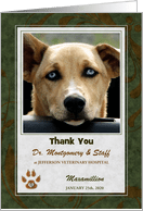 Thank You Cards for Veterinarian Animal Services from