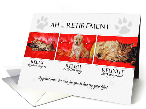 Fun Retirement Congratulations For The Pet Lover Card
