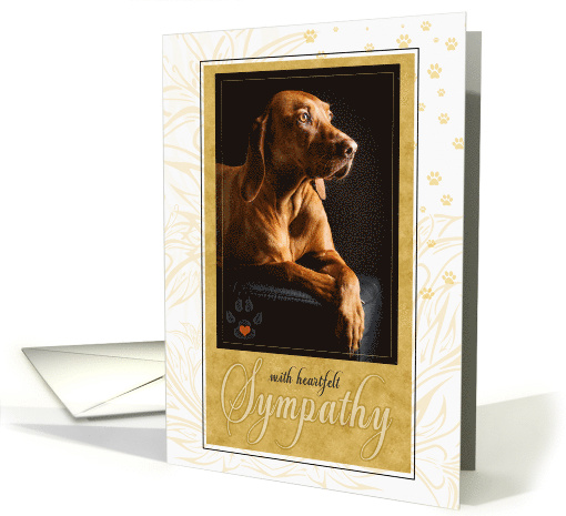 Pet Sympathy Loss Of Or Terminal Dog In Yellow Golds Card