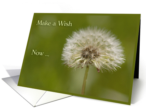 Happy Birthday Dandelion Wishes Card 864998