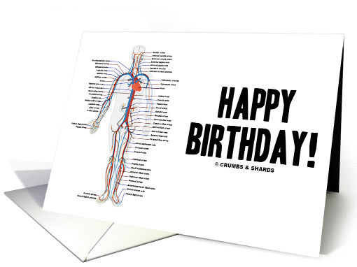 Happy Birthday Circulatory System Arteries Veins Human